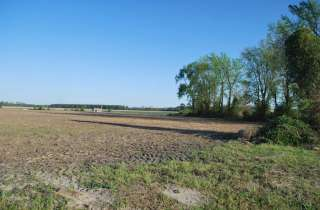 Heath Swamp Rd. Cove City 2.4 Acres
