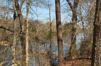 56 Acres on the Neuse River (Hill Farm)