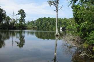 4.4 Acres Blounts Creek Beaufort County