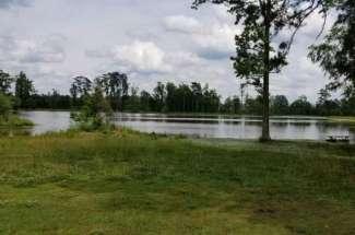 75 Acres Baysden Pond Road
