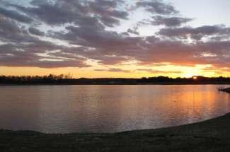 110 Acres Briley Lake Hwy. 55 East
