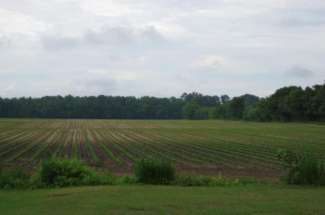 42 Acres Rebecca Rd, Greenville