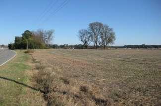 35 Acres Jason Road, La Grange