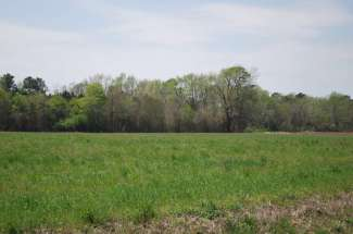 Causey Road Lot 8