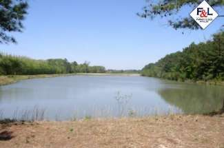 130 Acres Hwy 55 East, Neuse River