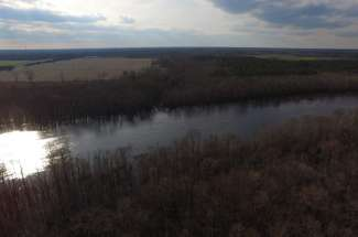 80 Acres on Cape Fear River
